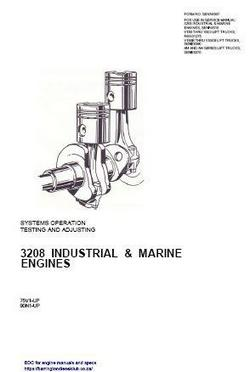 Marine 3208 systems operation testing and adjusting